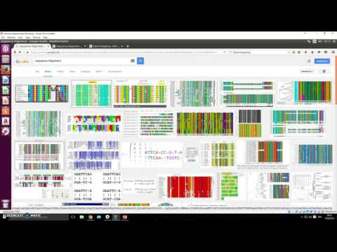 06 What is sequence alignment?