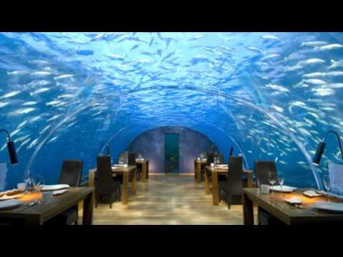 The Most Beatiful in The World. MALDIVES