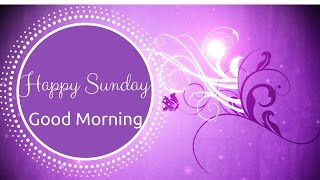 Happy Sunday | Adorable Good Morning Video