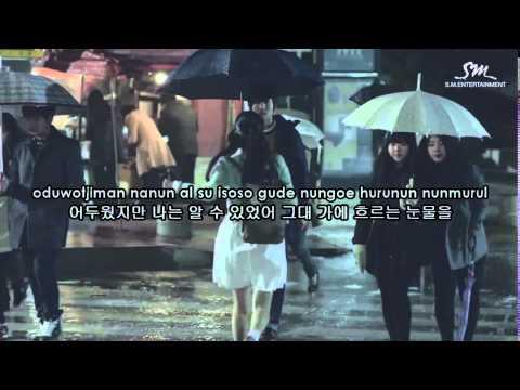 Wendy (웬디) - Because i love you (슬픔 속에 그댈 지워야만 해) karaoke