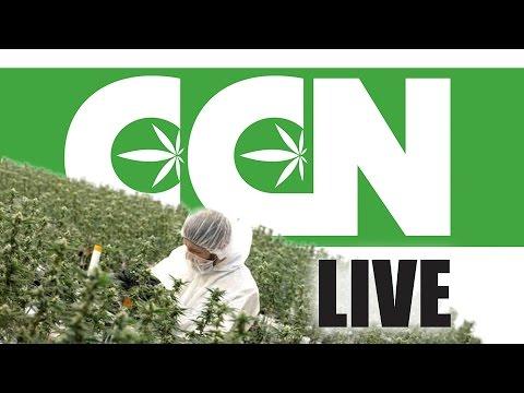 Cannabis Culture News LIVE: Marijuana Task Force or Task Farce?