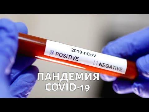 Пандемия COVID-19: инкубационный период, вероятность заразиться, карантин. Выпуск от 18 марта 2020