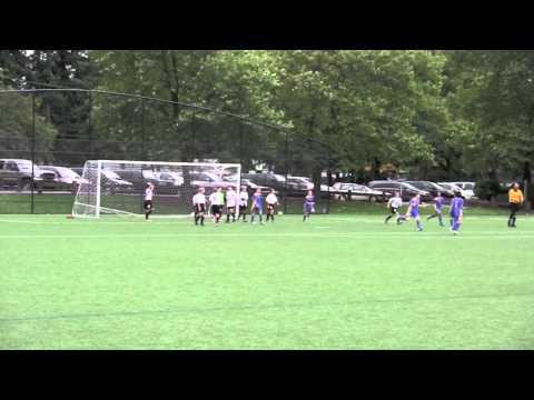 Synergy NPSL Goals 2011