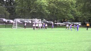 Synergy NPSL Goals 2011