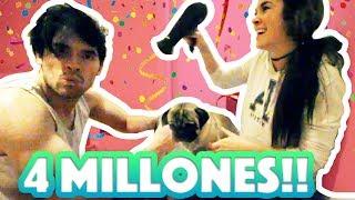 ESTAMOS DUCHANDO PERROS! Y FIESTA DE 4 MILLONES!! 🎉