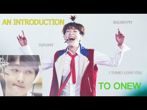 An Introduction to Onew