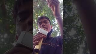 Download Video Ngăm hoa lệ rơi MP3 3GP MP4
