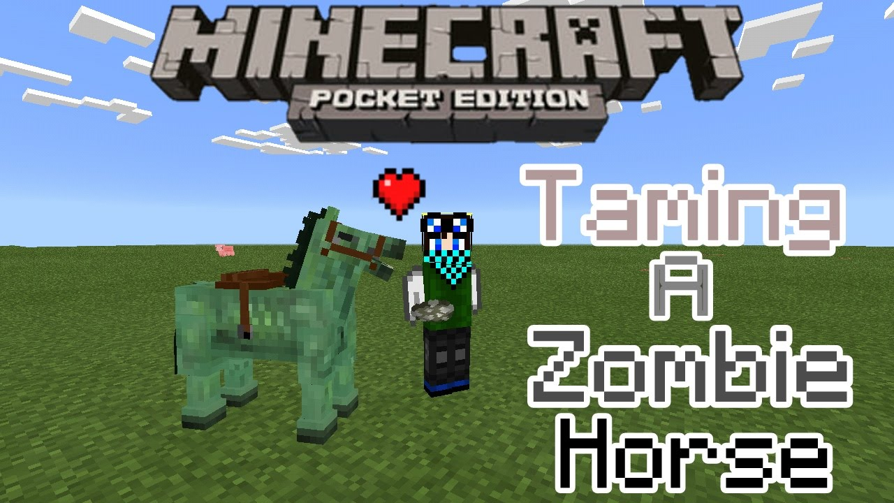 MCPE 9.9+ tutorial: How to tame a zombie horse in Mcpe Android Only