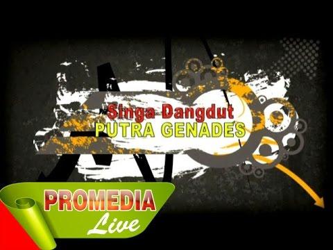 Musik Intro - Singa Dangdut Putra Genades 11-8-2014