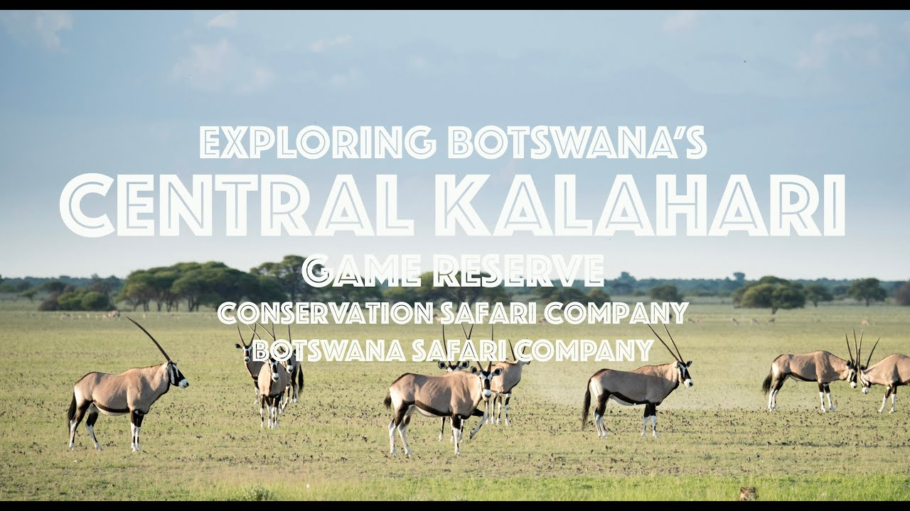 Exploring the Central Kalahari Game Reserve in Botswana