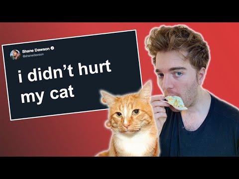 Shane Dawson accused of ANIMAL ABUSE?! *podcast + response*