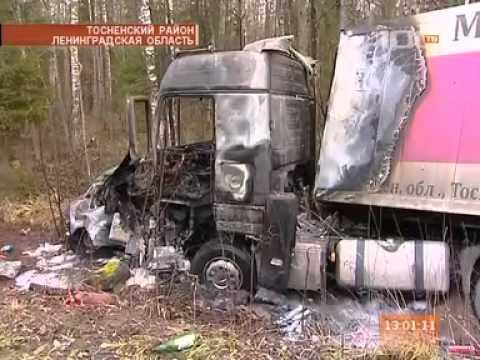 Пять человек погибли в результате аварии в Тосненском районе