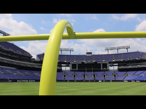 Baltimore Ravens' New Grass Field Demands the Best