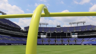 Baltimore Ravens' New Grass Field Demands the Best