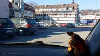 Eine Live Fahrstunde kurz vor der Prüfung