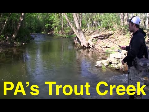 Fishing Pennsylvania's Trout Creek