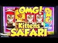 OMG! Kittens SAFARI Slot Machine - Long Play and BONUS - NICE WIN!!