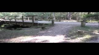 August 2013 Aldridge Hill Trip