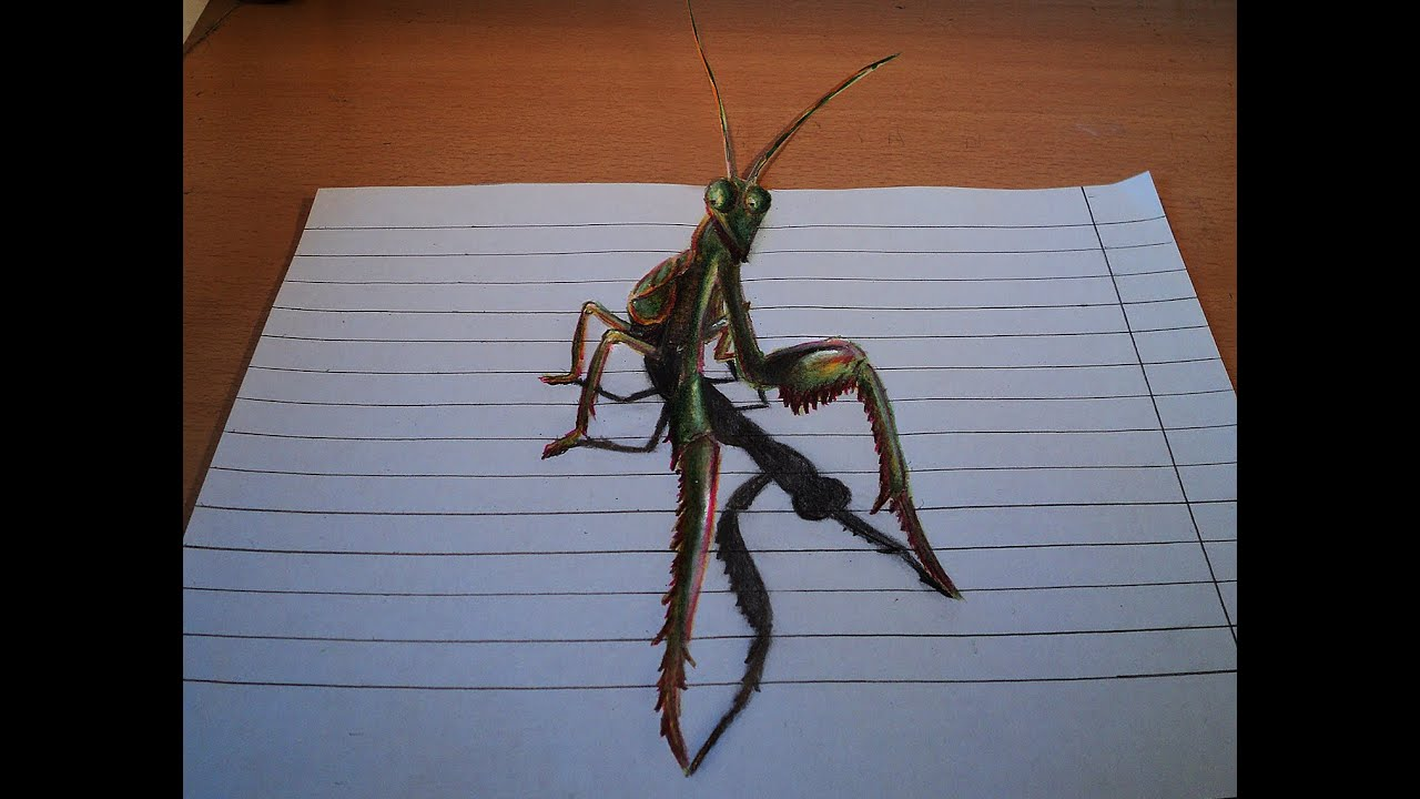 praying mantis drawing step by step