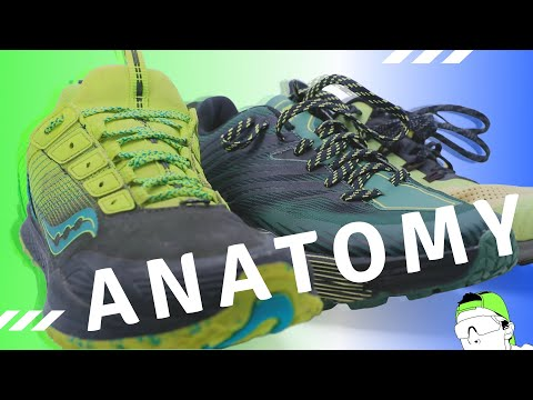 how-to-win-your-next-running-shoe-purchase-(shoe-anatomy)