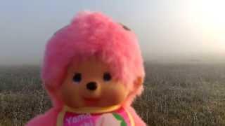 Monchhichi Pink dans le brouillard.
