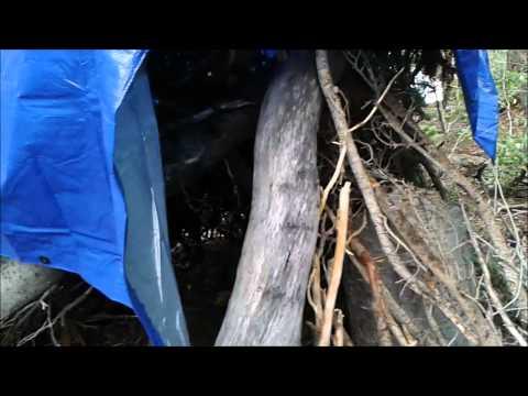 Wilderness Survival merit