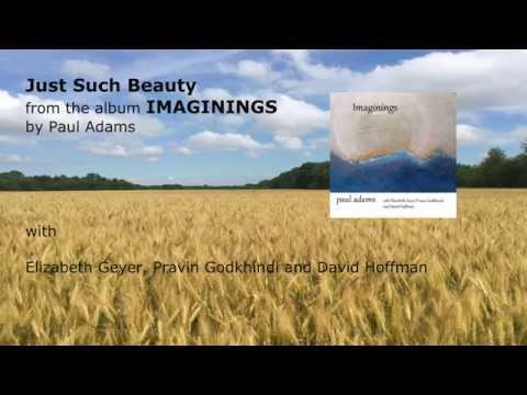 Paul Adams - Just Such Beauty