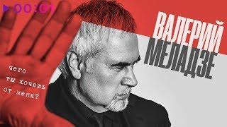 Валерий Меладзе - Чего ты хочешь от меня? | Official Audio | 2019