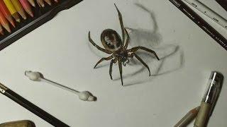 Как нарисовать паукаHow to draw a spider(Today I drew a spider  , because I'm afraid spiders.   Что-то настроение такое, только паучки в голову и лезут.. Кстати, безумно..., 2016-02-09T21:05:58.000Z)