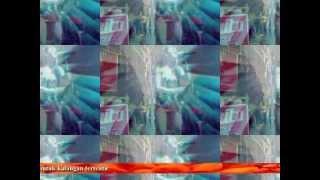 sewa organ tunggal (layang sworo - yenita)