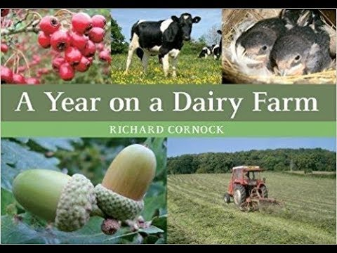 A Year on A Dairy Farm.The whole talk