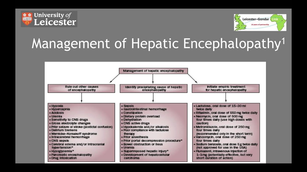 management of hepatic encephalopathy in 5 minutes - youtube, Skeleton