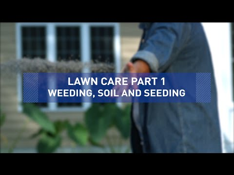 Weeding, Soil and Seeding – Lawn Care Tips Part 1