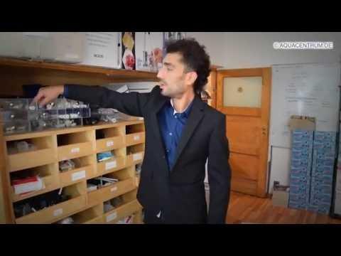 wasserionisierer-und-wasserfilter,-1/4''-steckschlauch-und-zubehör