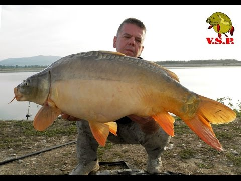 ŠARANski ribolov_Proljetno ludilo na jezeru Ontario_trailer / V.S.P. Fishing Team