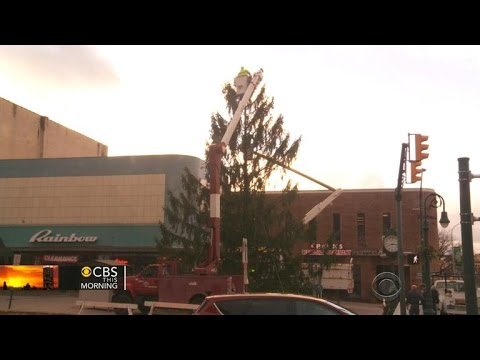 Ruining holiday spirit? Pennsylvania town to replace ugly Christmas tree