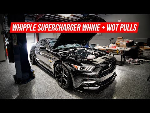 2016 Mustang GT Whipple Supercharger WOT Pulls + Sound Tube Mod Install