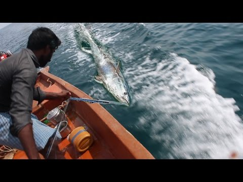 Tuna Fishing Caught on Tape - KADAL Tv