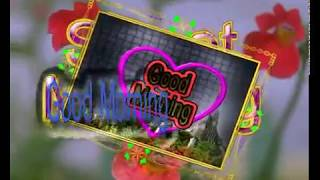 Good Morning Video...Whatsaap Sweet Message...Beautiful & Lovely Quotes...Wishes...Status