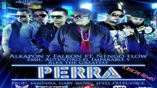 Download Perra Official Remix   Alkapon  Falkon Ft Ñengo Flow, Emil, Alex, Autentiko 'El Imparable' MP3 song and Music Video