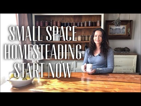 A Homestead Chat - Homesteading where you are, you can start NOW! & A bit about my Journey
