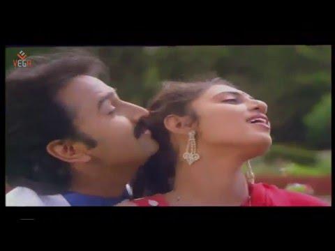 Love Song Pudhiya Paravai Video Song || Thendral Varum Theru Tamil Movie Music By Ilayaraja