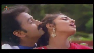 Love Song Pudhiya Paravai Video Song || Thendral Varum Theru Tamil Movie Music By Ilayaraja