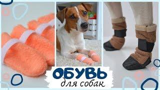 як зробити одяг для собак з носка