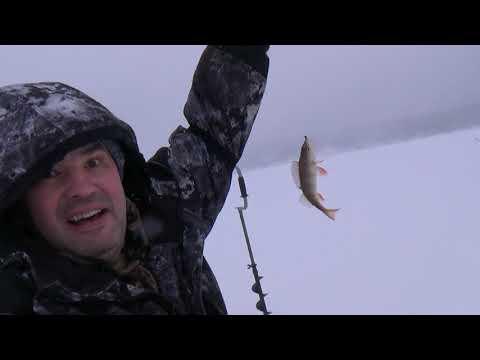 Река Чусовая, зимняя рыбалка, окунь бастует!