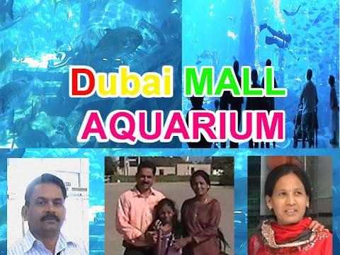 DUBAI MALL AQUARIUM BY SREENANDA KOLACHALAM   Dubai Aquarium   Dubai Mall   Sharks   In Telugu