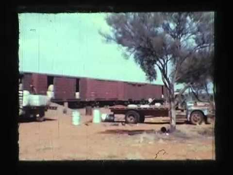 MULGATHING SHEEP STATION 1970