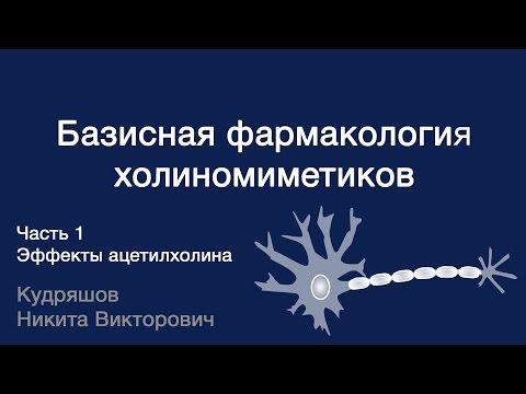 Базисная фармакология холиномиметиков. Часть 1