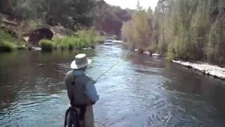 Battle Creek 2011