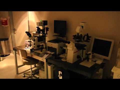 Huntington Reproductive Center-Virtual Tour